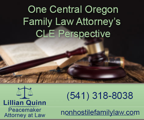 Read more about Lillian Quinn's Family Law Education conference experience